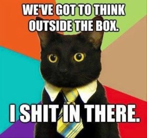 think outside the box cat (600 x 562)
