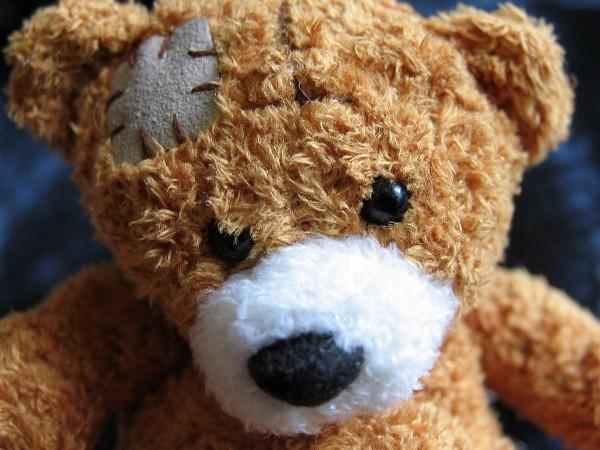 ursulet teddy bear