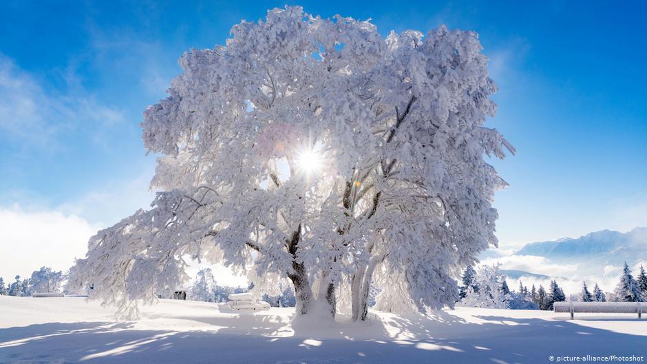 Winter (iarna)  Winter-iarna