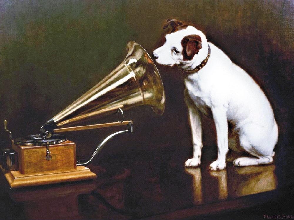 TOP SONGS ABOUT ANIMALS. VOTEAZĂ CEL MULT 20!