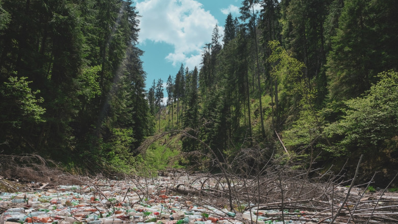 Berceanu despre gunoaiele de pe lacul Beliș: Primăriile sunt vinovate